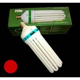 Plug & Grow 250W Sparepære / CFL - 2700K Varm hvid (RED)