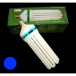 Plug & Grow 300W Sparepære / CFL - 6400K Kold hvid (BLUE)